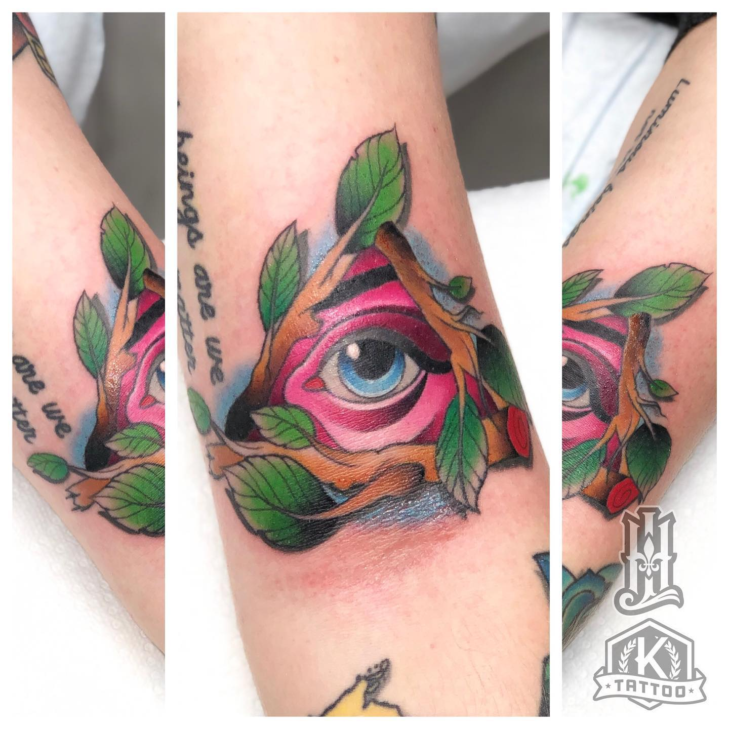 color_triangle_branch_eye